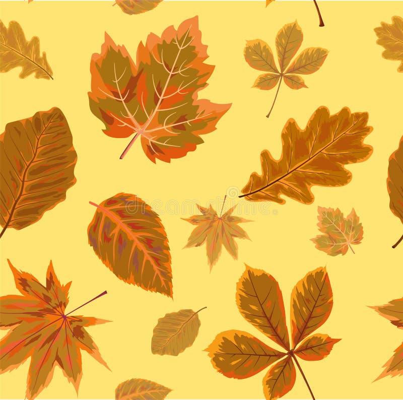 Wektorowego Bezszwowego jesień sezonu jesiennego chodaka tła kwiecisty wate royalty ilustracja