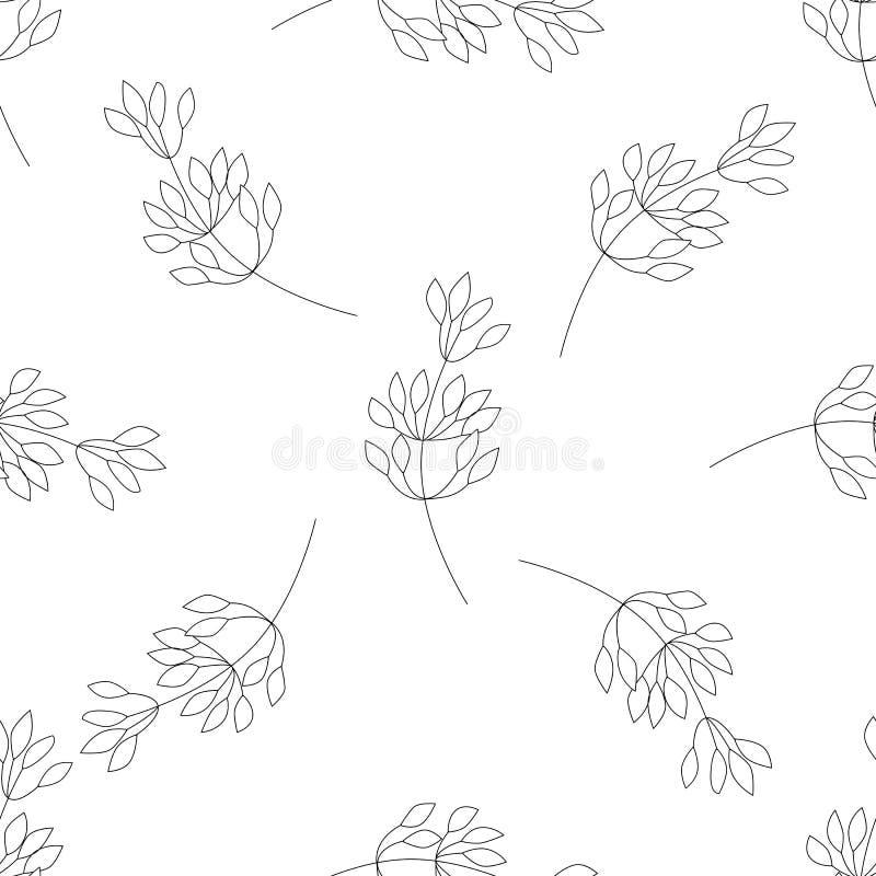 Wektorowego kwiatu biały wzór Bezszwowa botaniczna tekstura, wyszczególniać kwiat ilustracje Kwiecisty wzór w doodle stylu, ilustracji