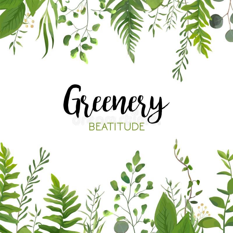 Wektorowego kwiecistego greenery karciany projekt: Lasowy paprociowy frond, Eucalyptu royalty ilustracja