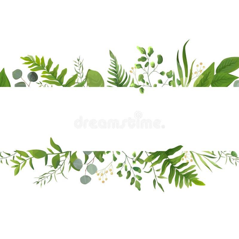 Wektorowego kwiecistego greenery karciany projekt: Lasowy paprociowy frond eukaliptus royalty ilustracja