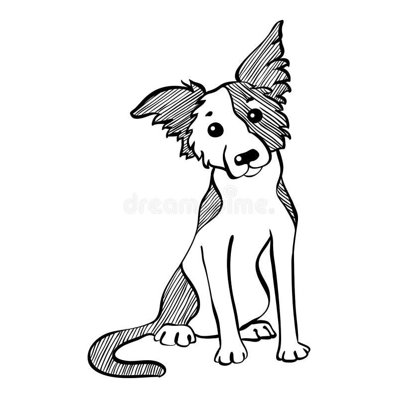 Wektorowego nakreślenia Border Collie psa śmieszny obsiadanie royalty ilustracja