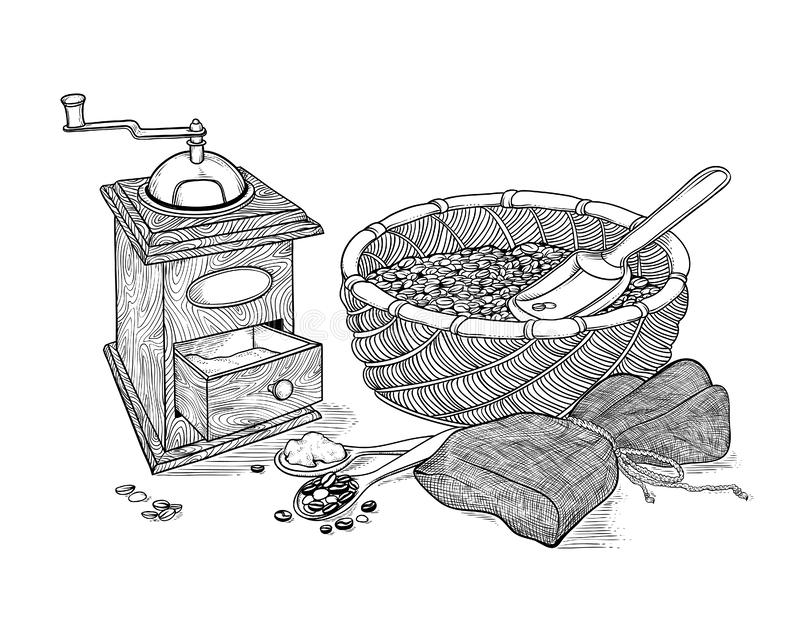 Wektorowego nakreślenie rysunku rocznika kawowy ostrzarz, zmielona kawa i fasole, ilustracja wektor