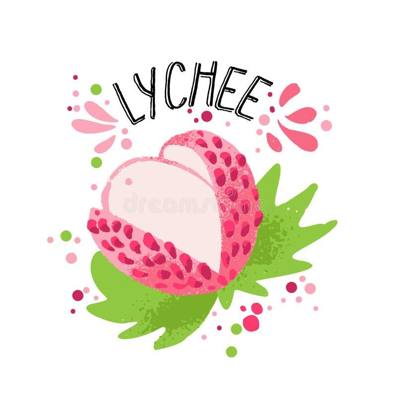 Wektorowego r?ka remisu lichee barwiona ilustracja Menchii, bia?ego lichee z braj?, i ziele? li?cie ?wie?e owoce tropikalne ilustracji