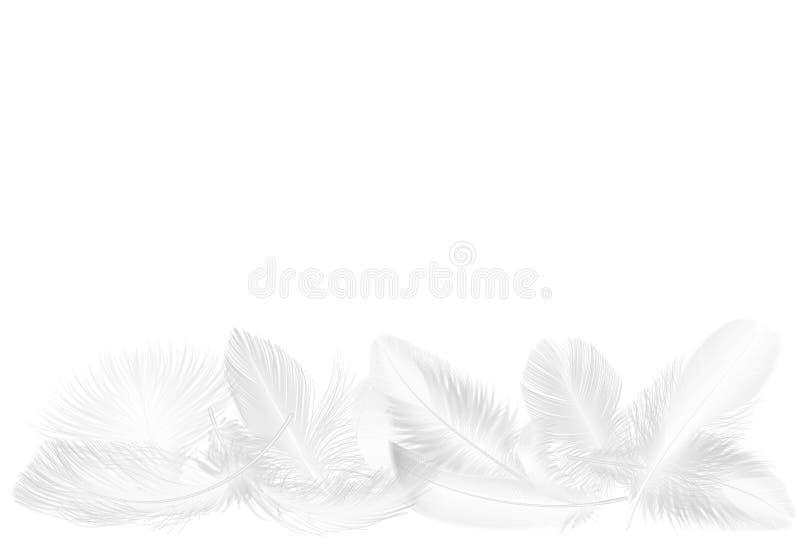 Wektorowego realistycznego miękkiego bielu spada puszyści pokręceni piórka ustawiają odosobnionego dalej na bielu ilustracji
