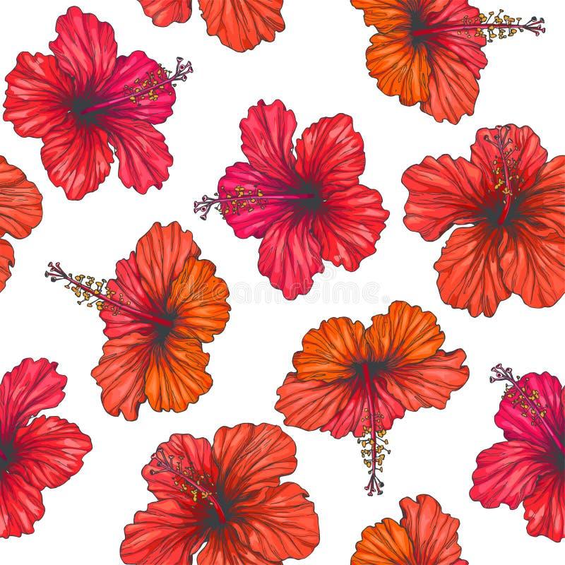 Wektorowego rocznika bezszwowy wzór z czerwonym tropikalnym kwiatu isolat ilustracja wektor