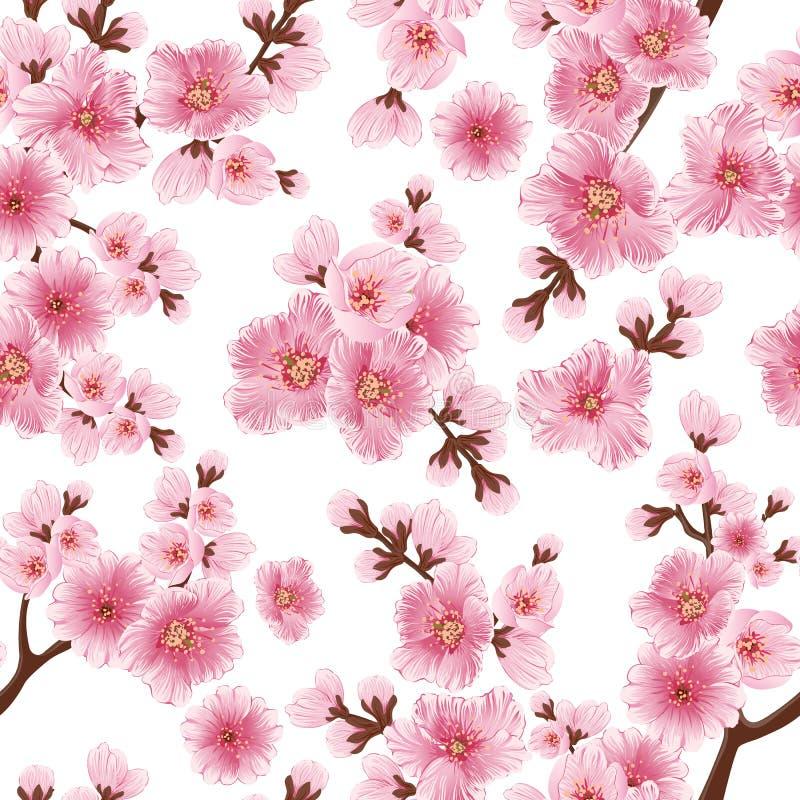 Wektorowego Sakura kwiatu bezszwowy deseniowy element Elegancka czereśniowego okwitnięcia tekstura dla tło royalty ilustracja