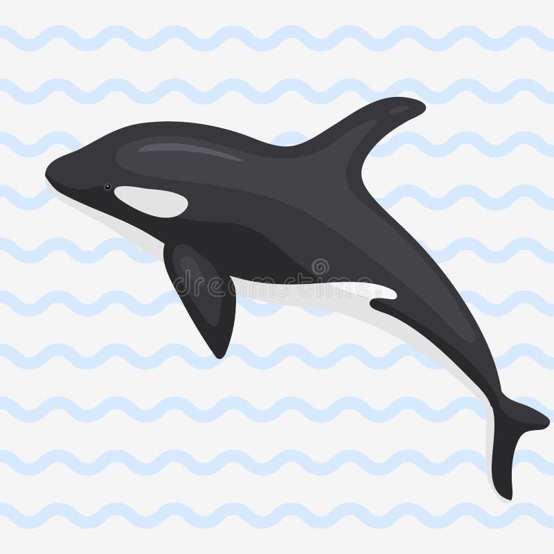 Wektorowego wielorybiego ilustracyjnego morskiego ssaka północy powierzchni humpback głębokiego oceanu morski ssak royalty ilustracja