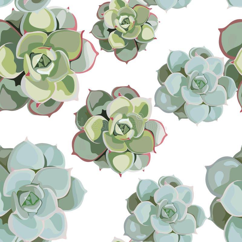 Wektorowego wiosna kwiatu bezszwowy wzór z sukulentami Elegancki czuły projekt dla kwiaciarnia sklepu royalty ilustracja