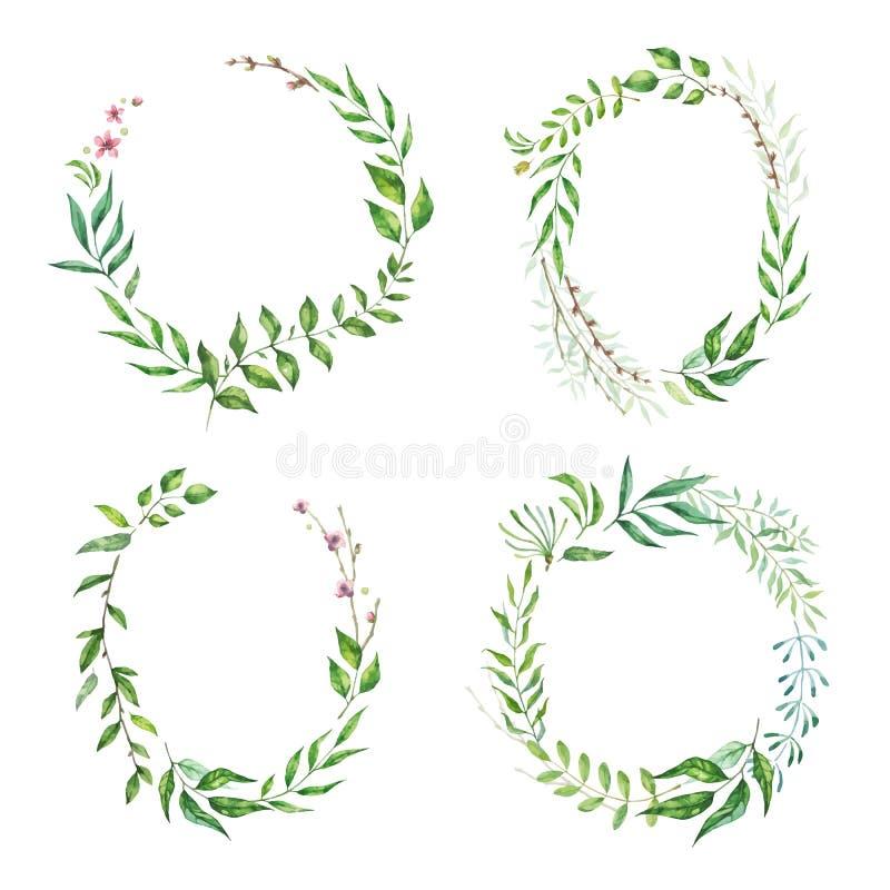 Wektorowej akwareli Kwiecista Ramowa kolekcja Set śliczny retro liść układał un kształt wianek royalty ilustracja