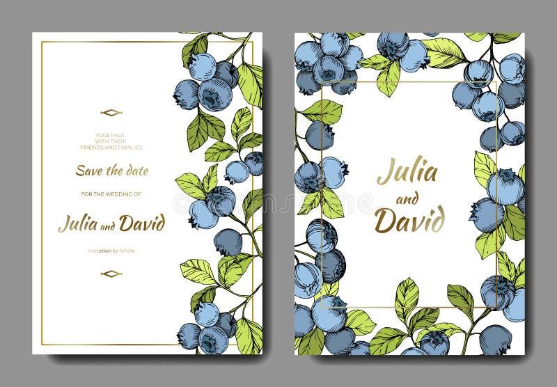 Wektorowej czarnej jagody błękitna i zielona grawerująca atrament sztuka Jagody i zieleń liście Ślubnej tło karty dekoracyjna gra ilustracja wektor