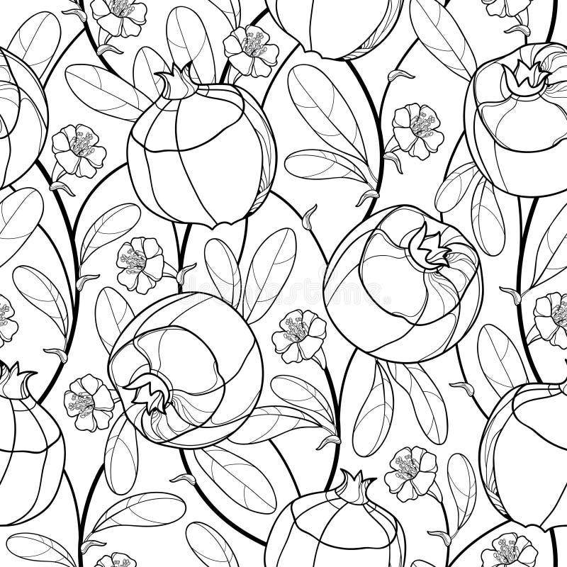 Wektorowej eleganci bezszwowy wzór z konturu granatowa owoc, ozdobnym ulistnieniem i kwiatem w czerni na białym tle, royalty ilustracja