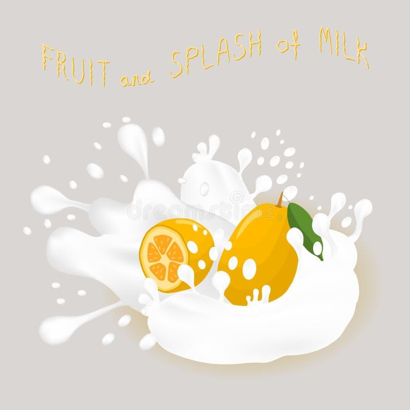Wektorowej ikony ilustracyjny logo dla dojrzałego egzotycznego owocowego żółtego kumquat royalty ilustracja