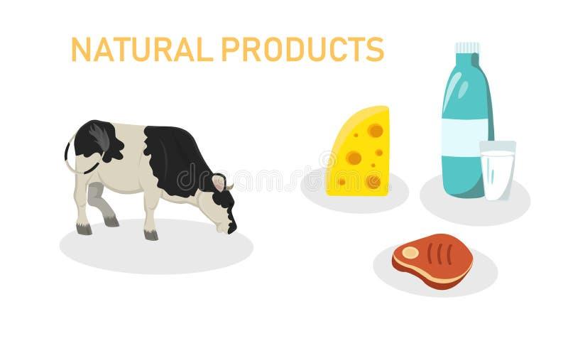 Wektorowej ilustracji Piszą Naturalnych produktach ilustracji