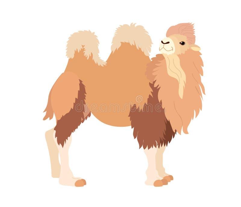 Wektorowej płaskiej kreskówki klamerki zwierzęca sztuka ilustracji