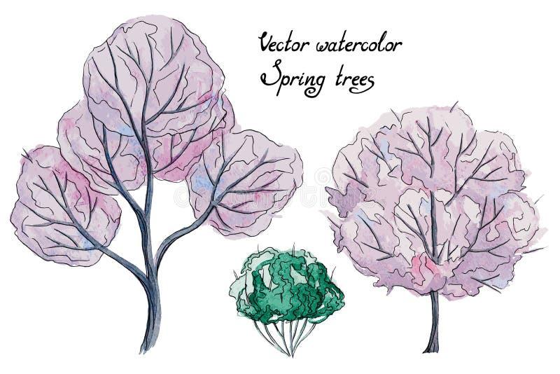 Wektorowi akwareli wiosny drzewa i krzak royalty ilustracja