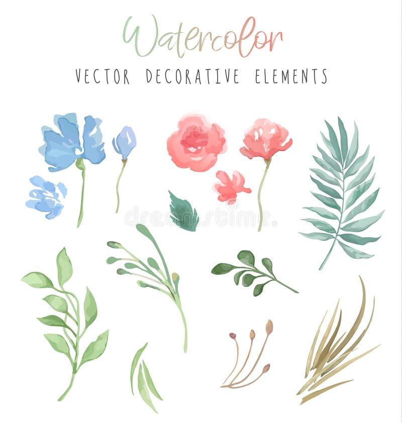 Wektorowi dekoracyjni kwiaty i rośliny ustawiający w akwareli projektują dla twój zaproszenia odizolowywających na białym tle kar ilustracji