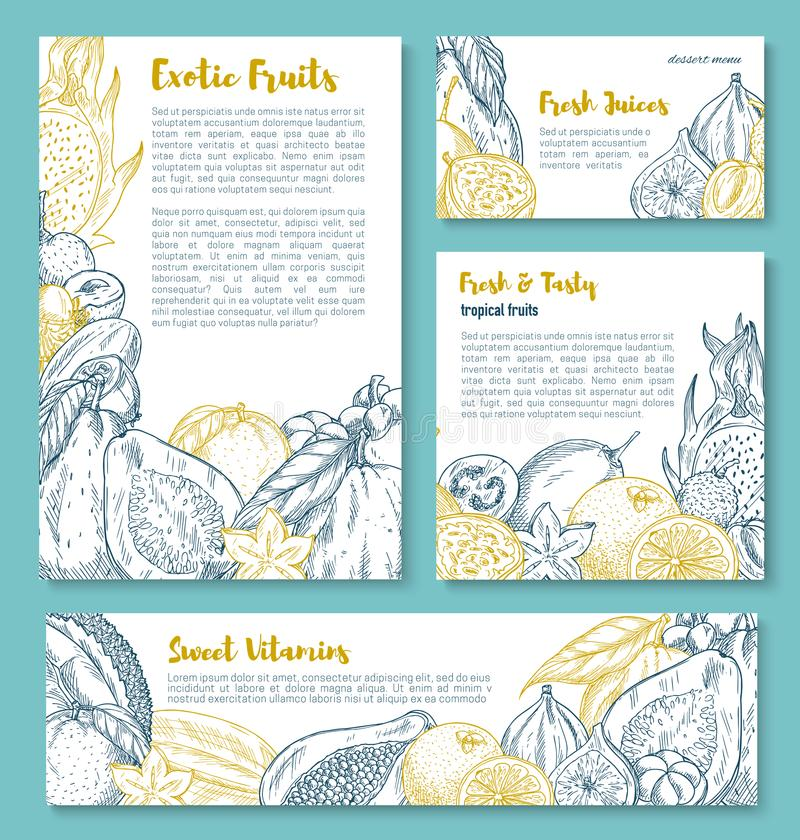 Wektorowi nakreślenie plakaty tropikalne egzotyczne owoc ilustracja wektor