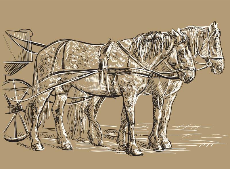 Wektorowi nicielnica konie ilustracji