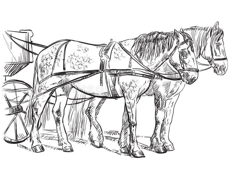 Wektorowi nicielnica konie ilustracja wektor