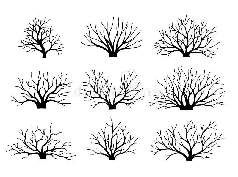 Wektorowi wizerunków krzaki bez liści Set Jesieni zima krzaki puszek spadać liść ilustracja wektor