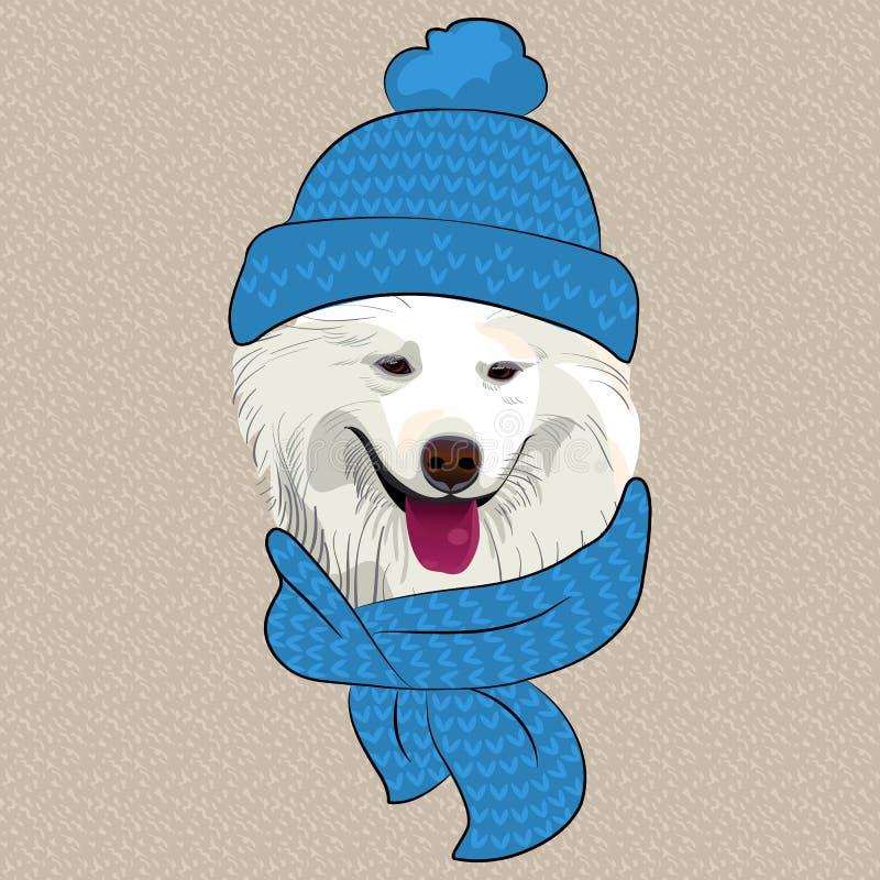 Wektorowy śmieszny kreskówka modnisia Samoyed psa uśmiech ilustracja wektor