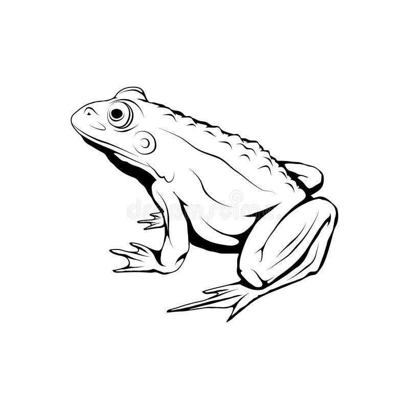 Wektorowy żaba logo Żaby nakreślenie royalty ilustracja