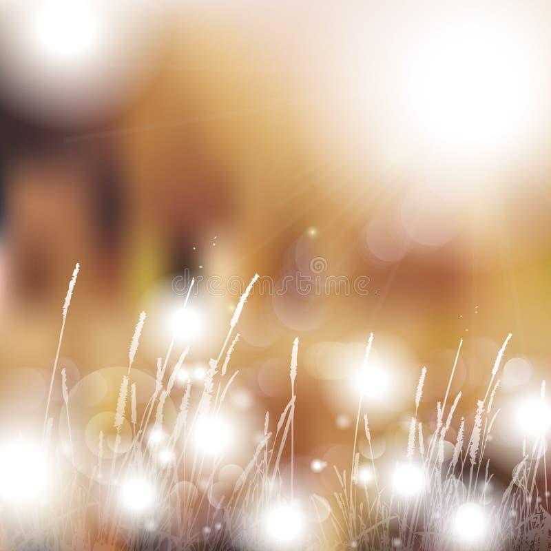 Wektorowy abstrakcjonistyczny defocused bokeh zaświeca natury wiosny lata tło Eleganckiego modnisia rozmyty tło z bokeh skutkiem  zdjęcie royalty free