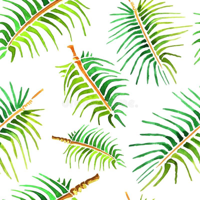 Wektorowy akwareli drzewka palmowego liścia tło ilustracja wektor