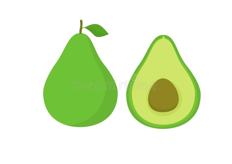 Wektorowy Avocado Fuit zdjęcie stock