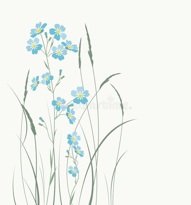 Wektorowy błękit zapomina ja nie kwiaty ilustracja wektor