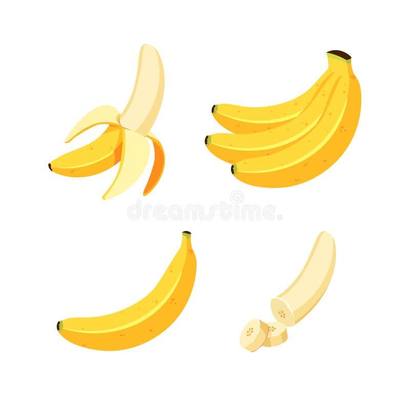 Wektorowy banan Wiązki świeże bananowe owoc odizolowywać na białym tle, secie kreskówka i mieszkanie wektoru ilustracjach, royalty ilustracja