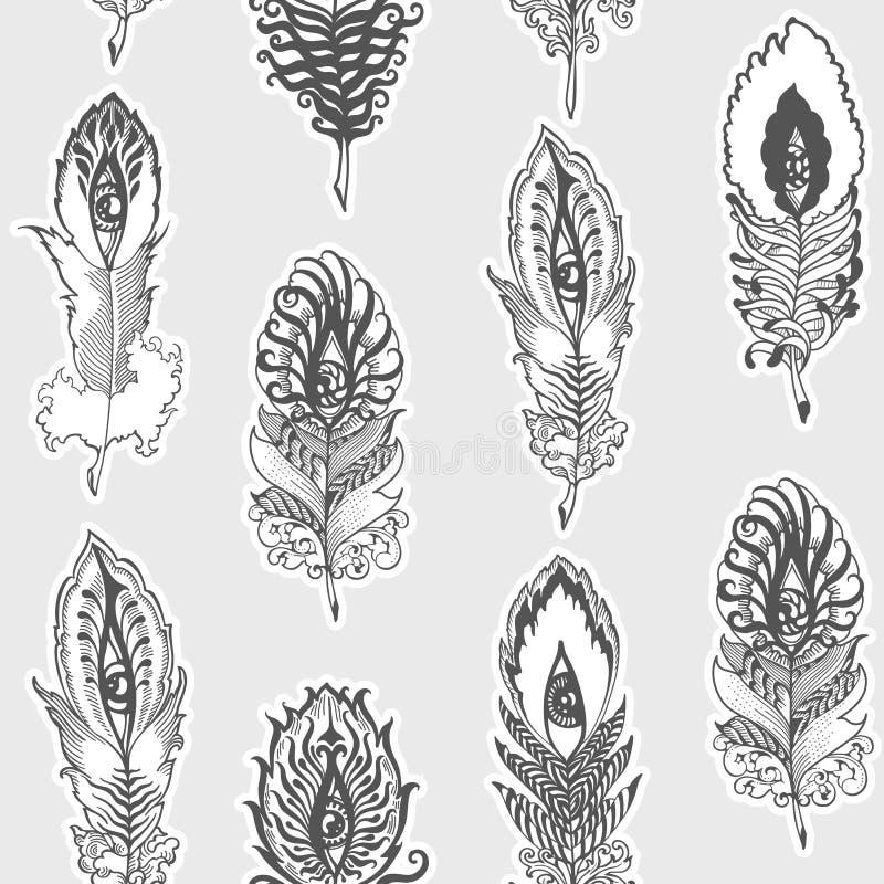 Wektorowy bezszwowy pionowo wzór dziwaczni piórka royalty ilustracja