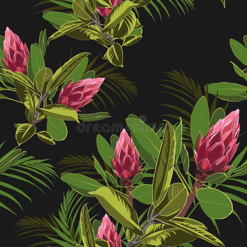 Wektorowy bezszwowy tropikalny wzór, żywy zwrotnika ulistnienie z ficus elastycznym i palmą, opuszczamy w kwiacie, czerwony prote royalty ilustracja
