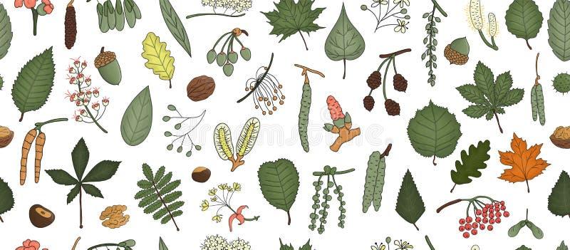 Wektorowy bezszwowy wzór barwioni drzewni elementy odizolowywający na białym tle Kolorowy tło brzoza, royalty ilustracja
