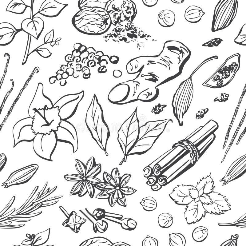 Wektorowy bezszwowy wzór pikantność i ziele Ręka rysujący elementy na tle w czarny i biały ilustracja wektor