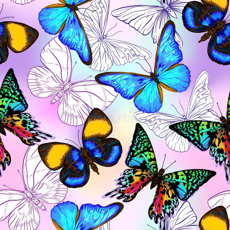 Wektorowy bezszwowy wzór, ręka rysujący tło z motylami ilustracja wektor