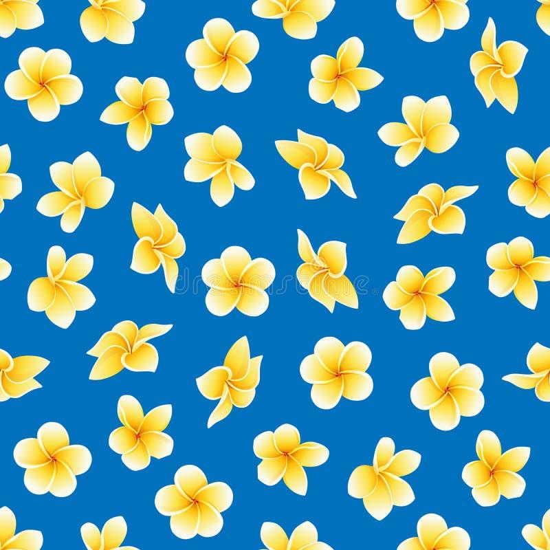 Wektorowy bezszwowy wzór z kwiatem Plumeria lub Frangipani na błękicie ilustracja wektor