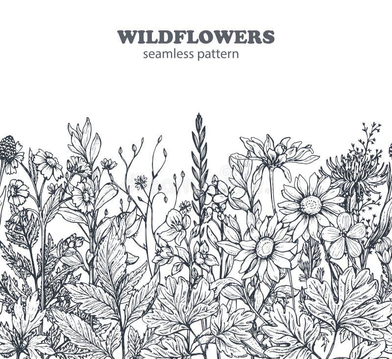 Wektorowy bezszwowy wzór z ręka rysującymi kwiatami i ziele ilustracji
