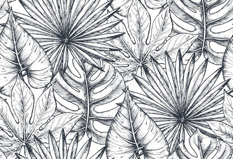 Wektorowy bezszwowy wzór z składami ręki rysować tropikalne rośliny ilustracji