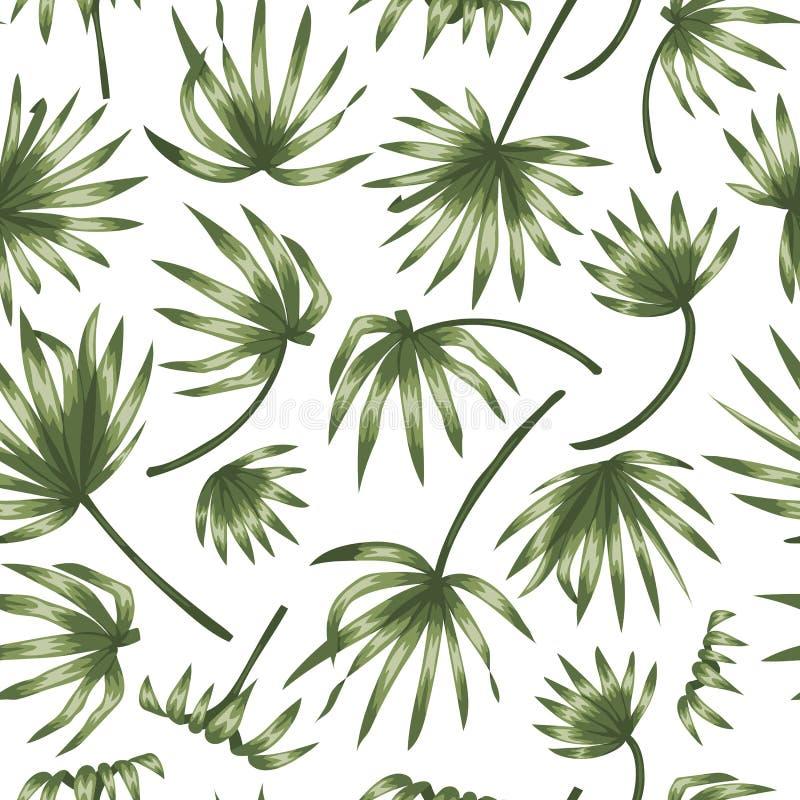 Wektorowy bezszwowy wz?r zielony drzewko palmowe opuszcza na bia?ym tle royalty ilustracja