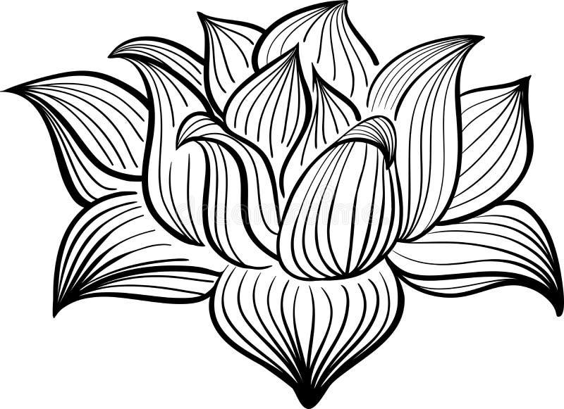 Wektorowy Czarny I Biały Lotosowy kwiat zdjęcie stock