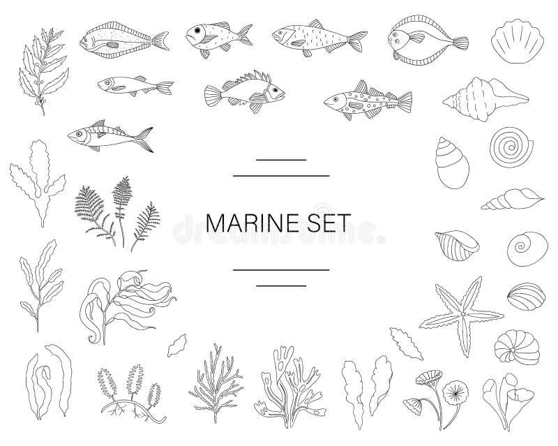 Wektorowy czarny i biały set ryba, denne skorupy, gałęzatki odizolowywać na białym tle ilustracja wektor