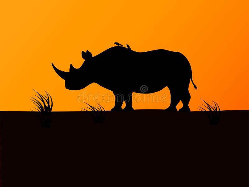 Wektorowy czarny nosorożec sylwetki tła zmierzch ilustracji