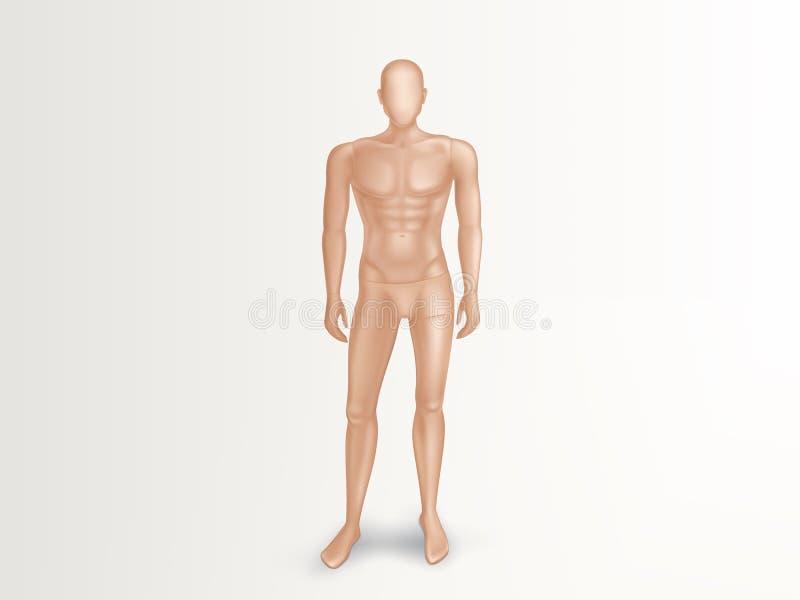 Wektorowy 3d męski mannequin, naga plastikowa atrapa ilustracja wektor