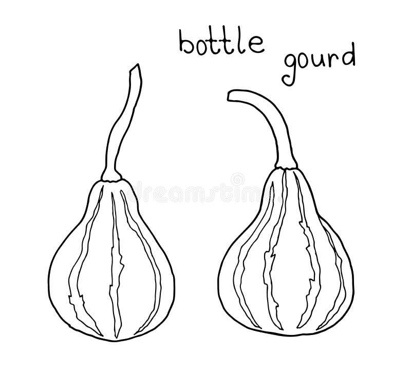 Wektorowy doodle rysunek lagendaria ordynariusz, kalabasa, butelki gurda, lagendaria snakelike, indyjski ogórek, bania, kabaczek, royalty ilustracja