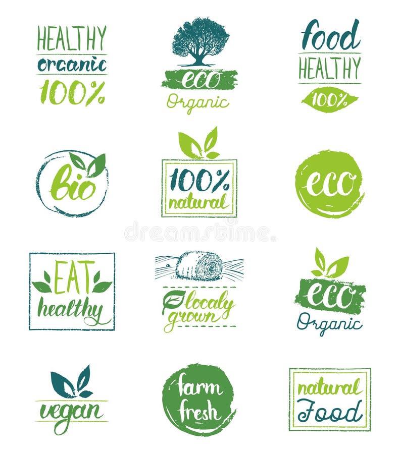 Wektorowy eco, organicznie, życiorys logo, grępluje szablony Ręcznie pisany zdrowy je ikony ustawiać Weganin, naturalny jedzenie  royalty ilustracja