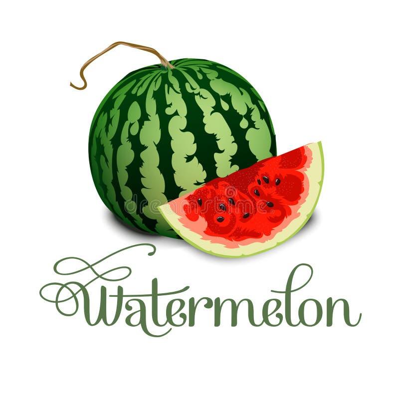Wektorowy ilustracyjny logo dla całego dojrzałego czerwonego owocowego arbuza, zielony trzon, rżnięta połówka, pokrajać plasterek royalty ilustracja