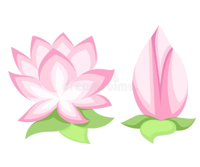 Wektorowy ilustracyjny Piękny różowy lotosowy kwiat, odosobniony na białym tle Elegancka kwiecista wiosny tapeta Powitanie lub in ilustracja wektor