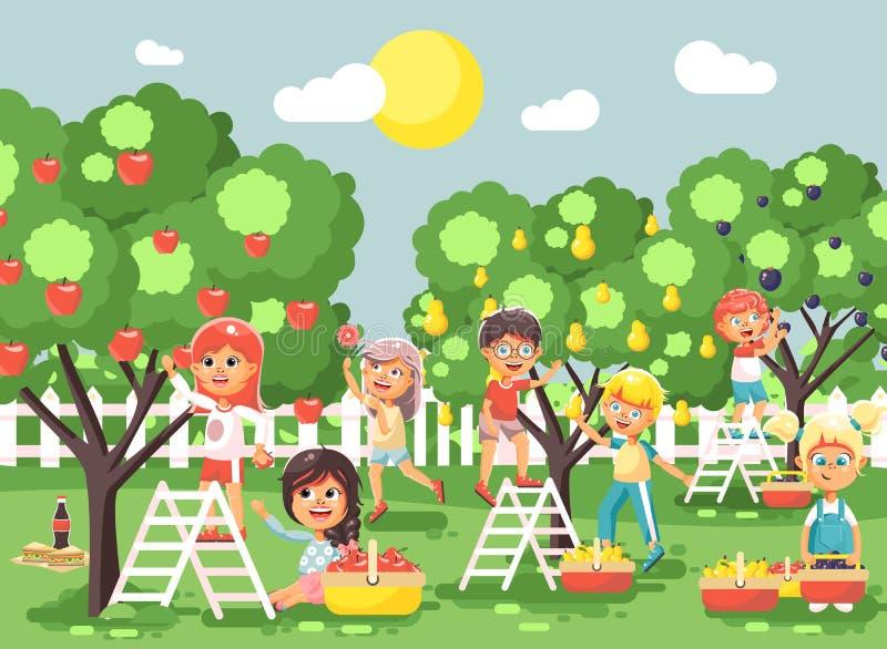 Wektorowy ilustracyjny postać z kreskówki dzieci dziewczyn i chłopiec żniwa owoc jesieni dojrzały sad uprawia ogródek od śliwki,  royalty ilustracja
