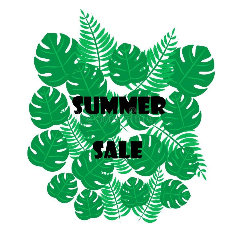 Wektorowy ilustracyjny sztandaru projekta szablon z tropikalną palmą opuszcza i rośliny Lato sprzeda?y tekst ilustracji